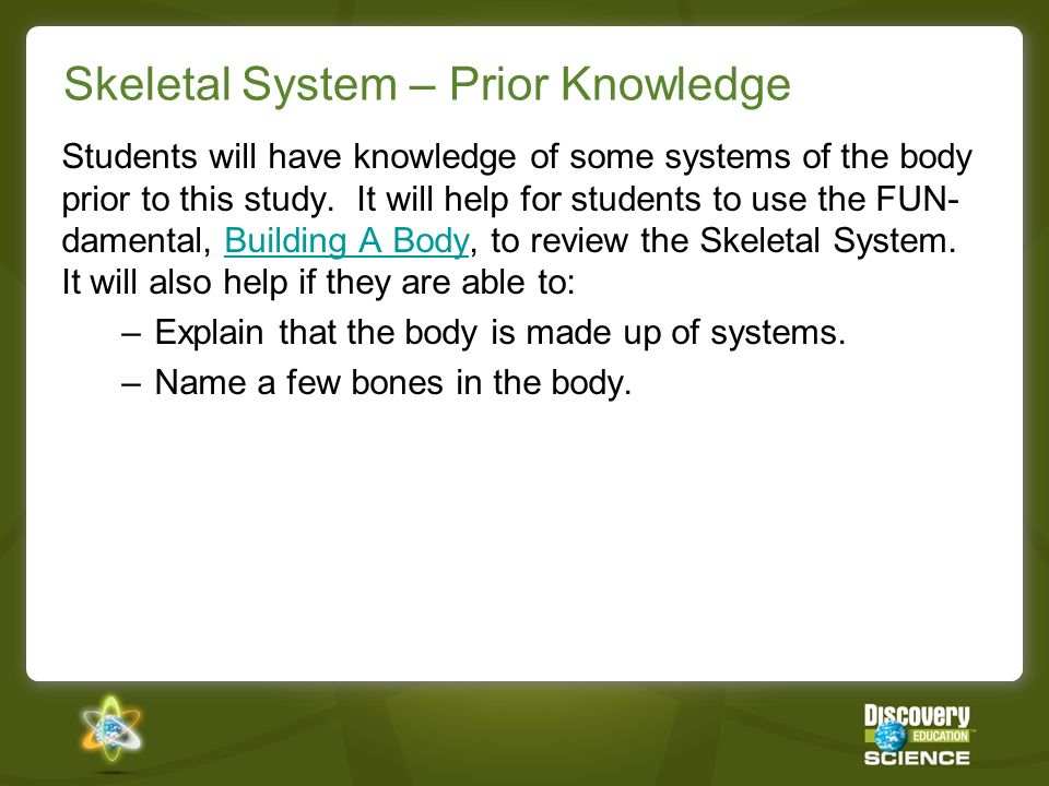 Skeletal System – Prior Knowledge