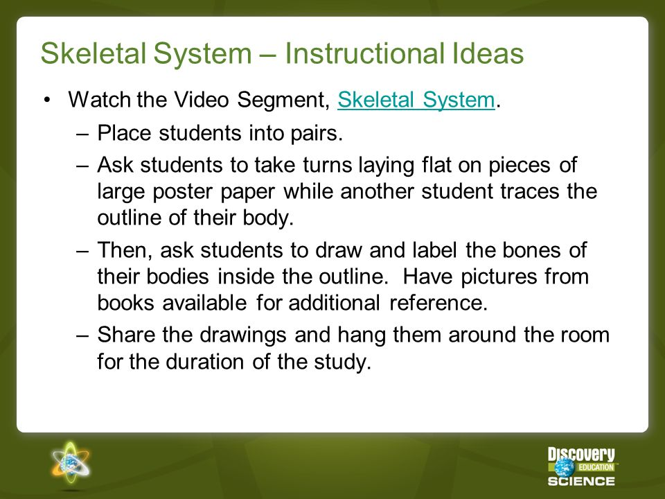 Skeletal System – Instructional Ideas