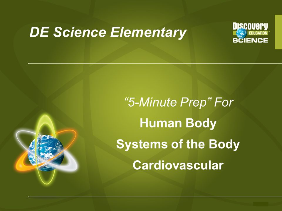 5-Minute Prep For Human Body Systems of the Body Cardiovascular