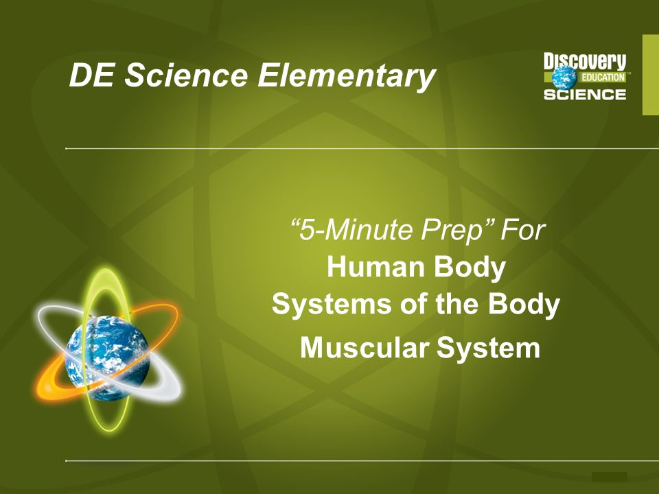 5-Minute Prep For Human Body Systems of the Body