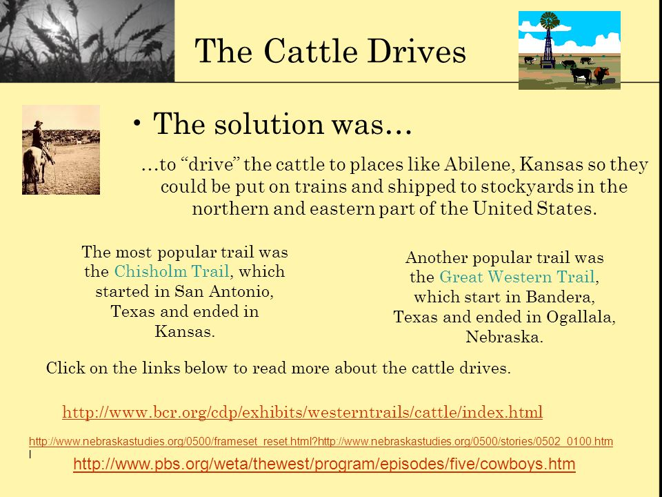 The Cattle Drives The solution was…