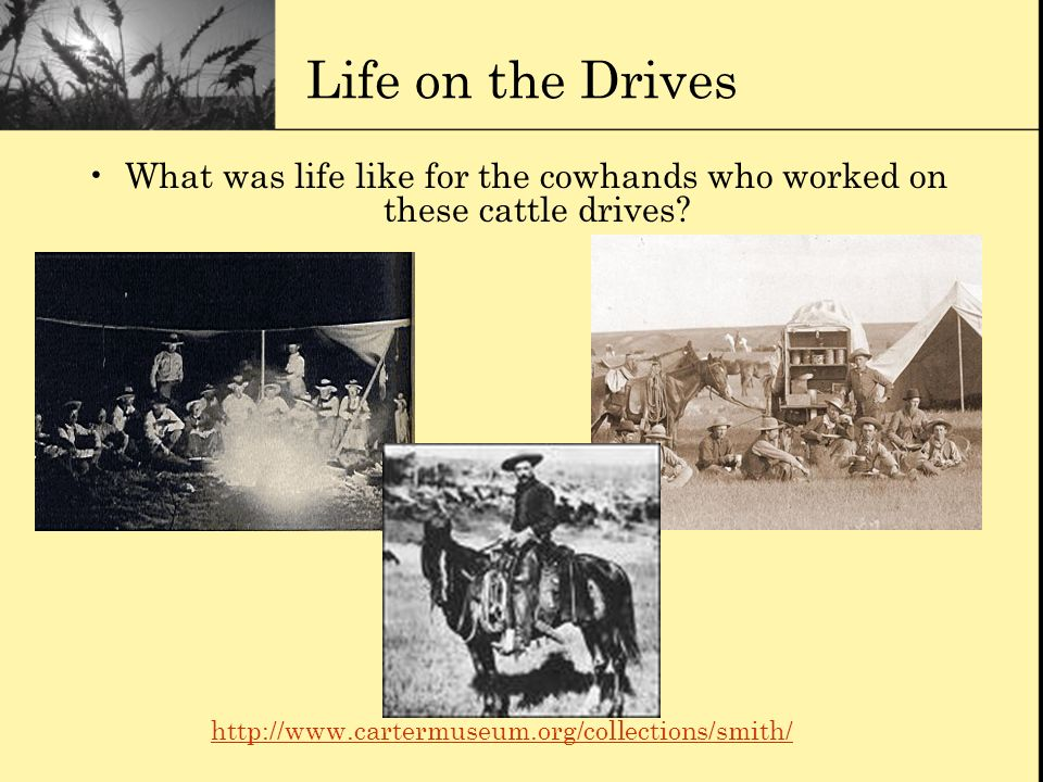 What was life like for the cowhands who worked on these cattle drives