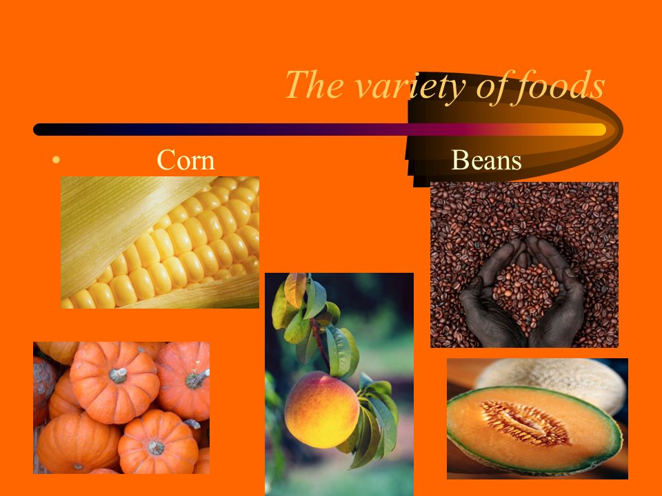 The variety of foods Corn Beans