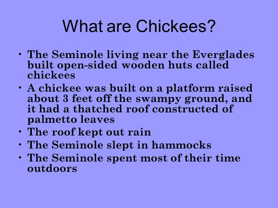 What are Chickees The Seminole living near the Everglades built open-sided wooden huts called chickees.