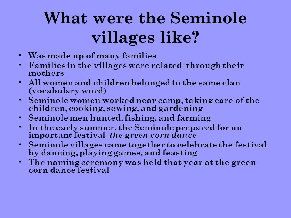 What were the Seminole villages like