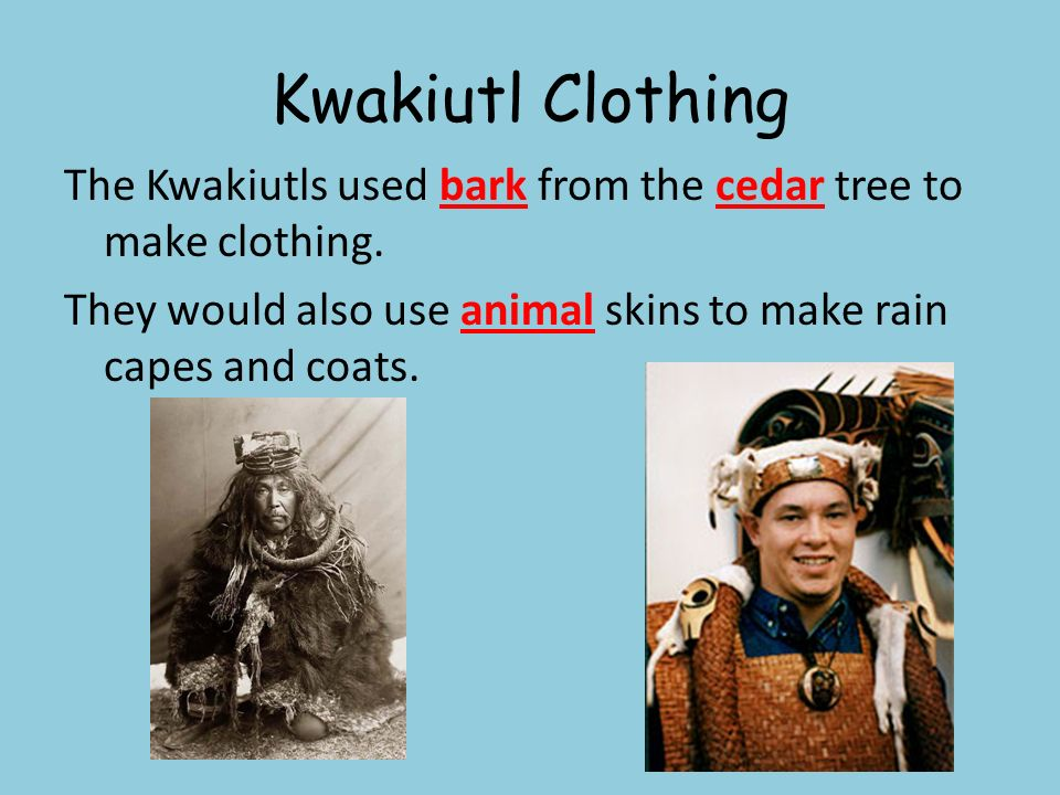 Kwakiutl by the sea, Make a totem from a tree - ppt download