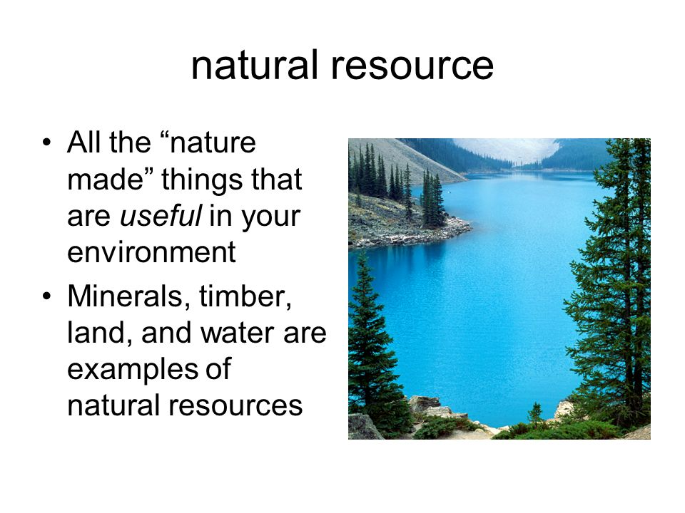 natural resource All the nature made things that are useful in your environment.