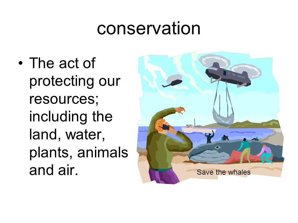 conservation The act of protecting our resources; including the land, water, plants, animals and air.