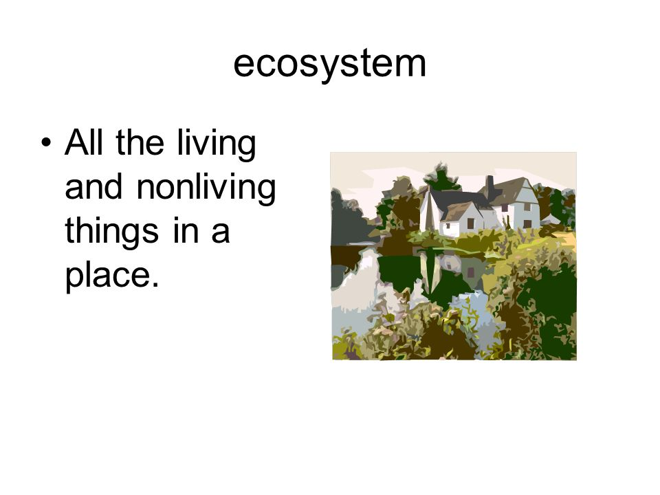 ecosystem All the living and nonliving things in a place.