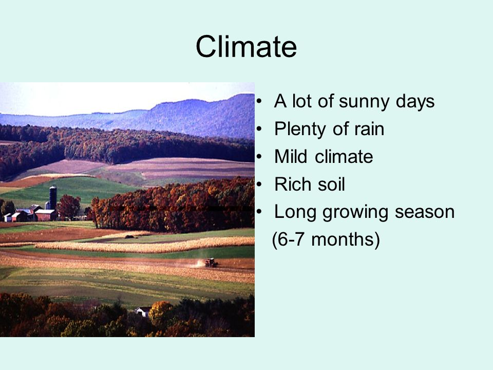 Climate A lot of sunny days Plenty of rain Mild climate Rich soil