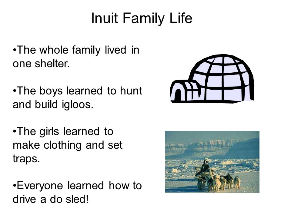 Inuit Family Life The whole family lived in one shelter.