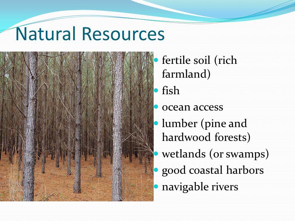 Natural Resources fertile soil (rich farmland) fish ocean access