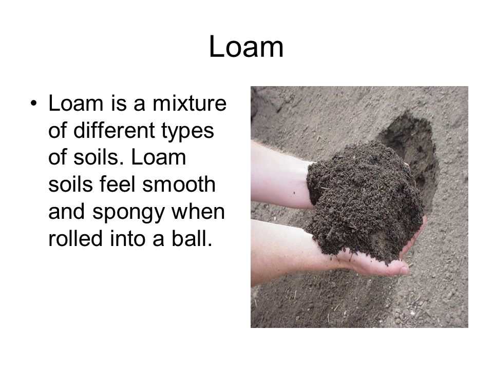 Loam Loam is a mixture of different types of soils.