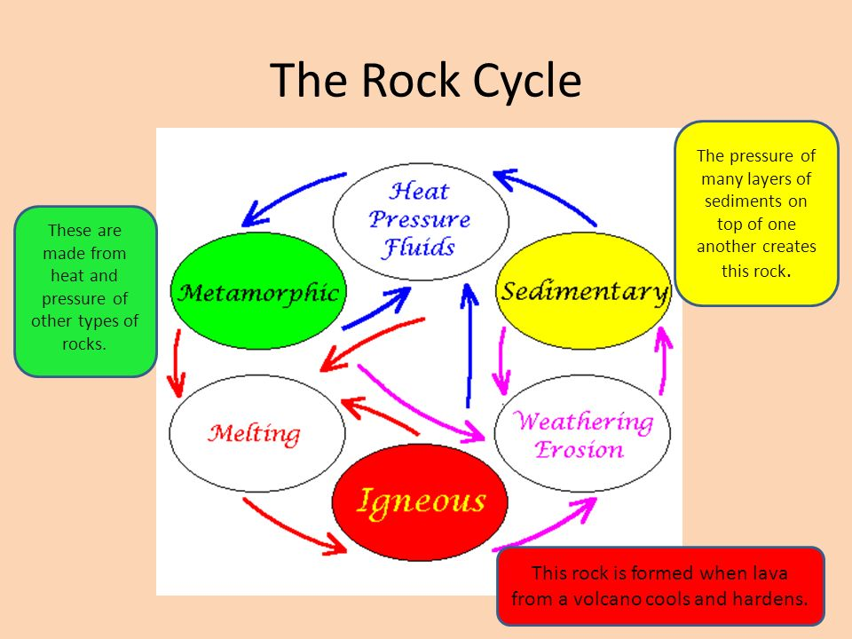 The Rock Cycle The pressure of many layers of sediments on top of one another creates this rock.
