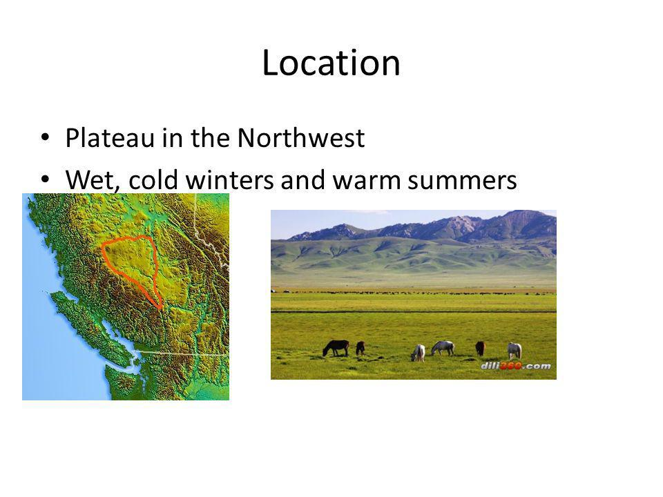 Location Plateau in the Northwest Wet, cold winters and warm summers