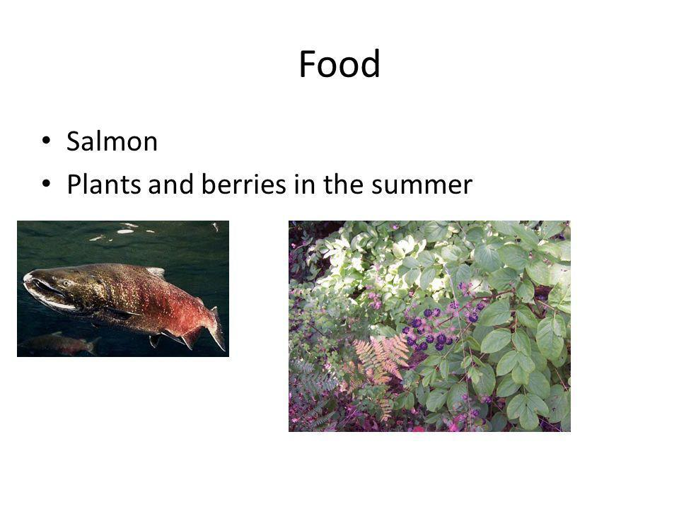 Food Salmon Plants and berries in the summer