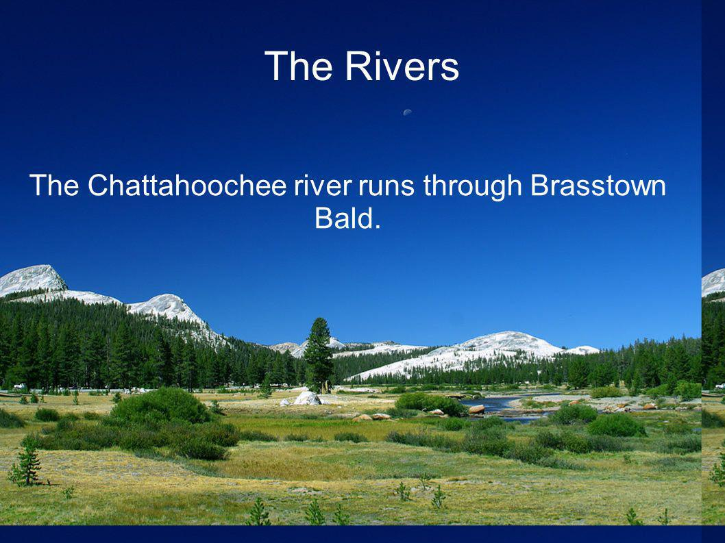 The Chattahoochee river runs through Brasstown Bald.