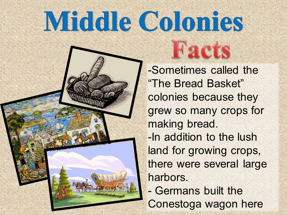 Middle Colonies Facts. -Sometimes called the The Bread Basket colonies because they grew so many crops for making bread.