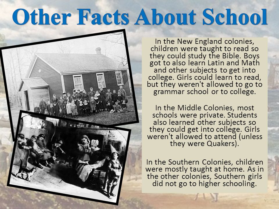 Other Facts About School