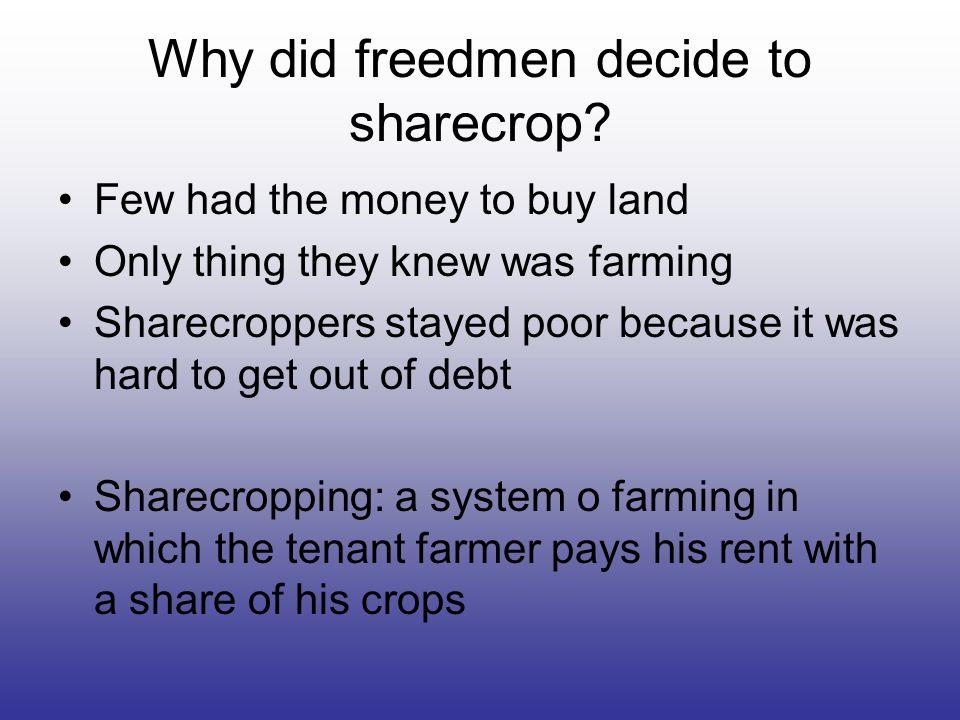 Why did freedmen decide to sharecrop