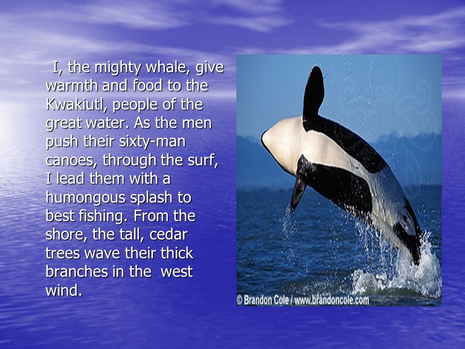 I, the mighty whale, give warmth and food to the Kwakiutl, people of the great water.