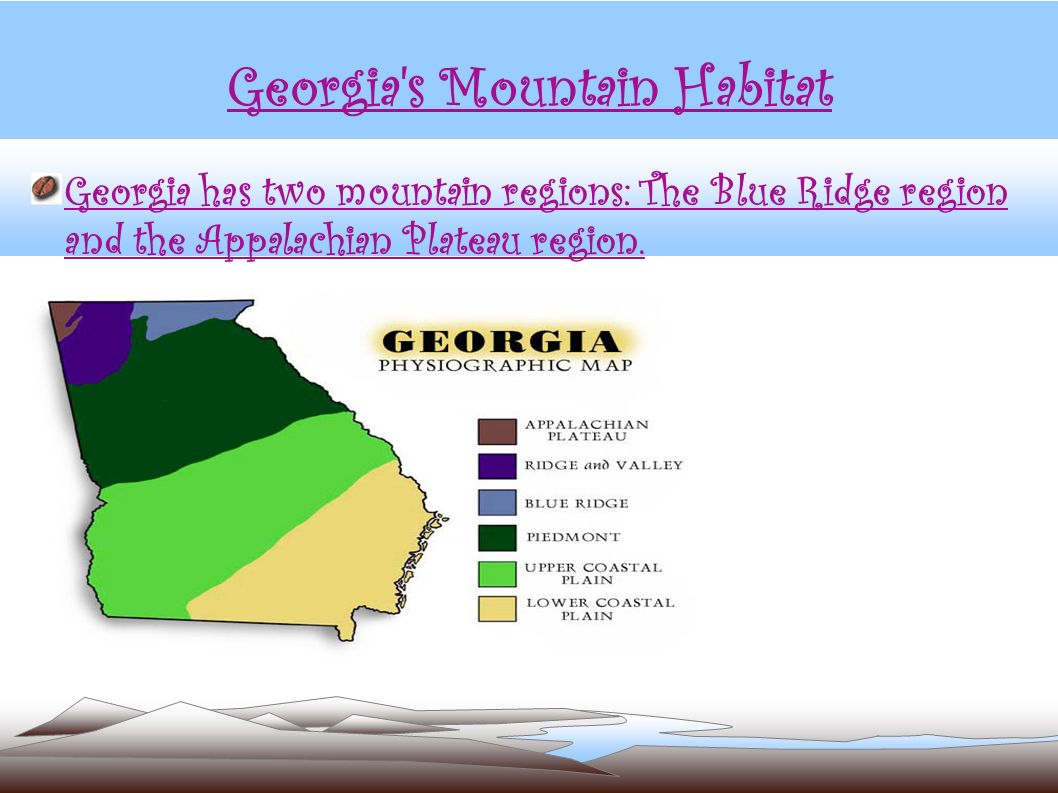 Georgia s Mountain Habitat