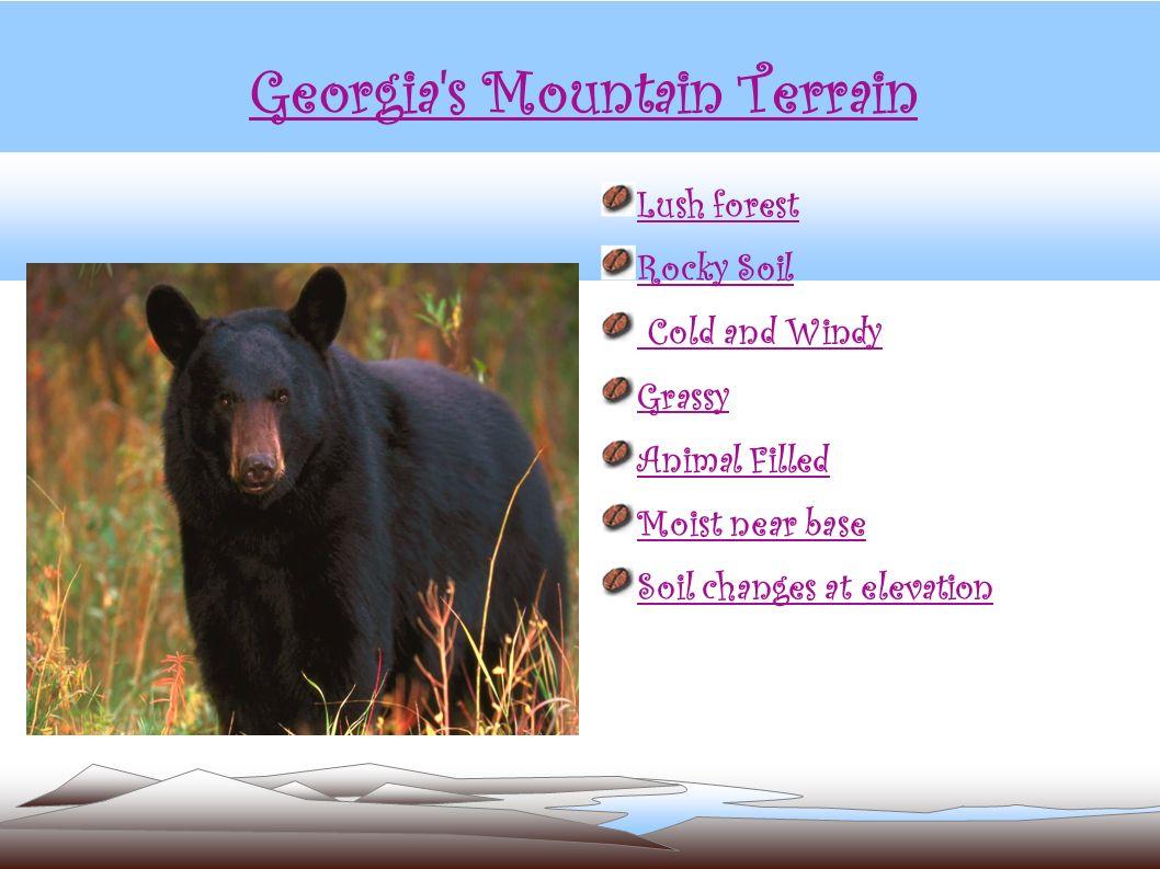 Georgia s Mountain Terrain
