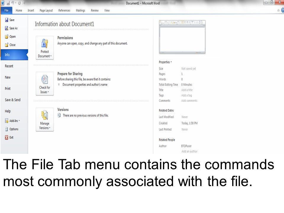 The File Tab menu contains the commands most commonly associated with the file.