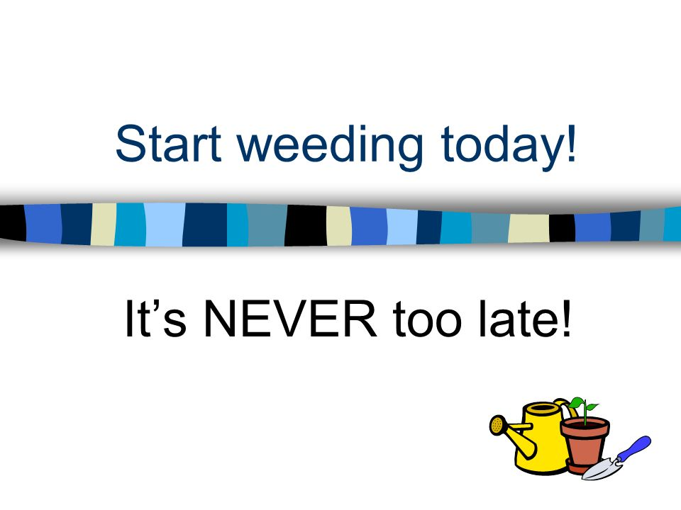 Start weeding today! It's NEVER too late!