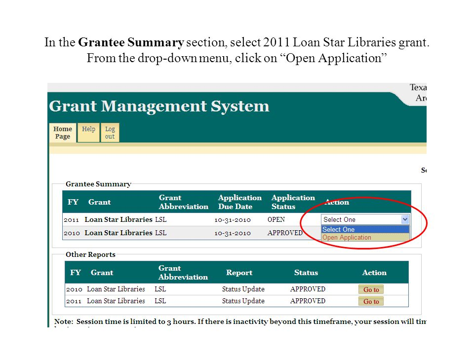 In the Grantee Summary section, select 2011 Loan Star Libraries grant