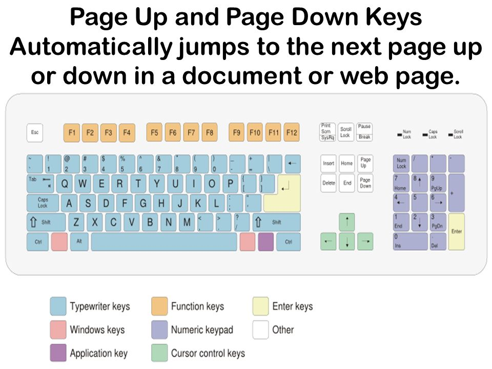 Page Up and Page Down Keys Automatically jumps to the next page up or down in a document or web page.