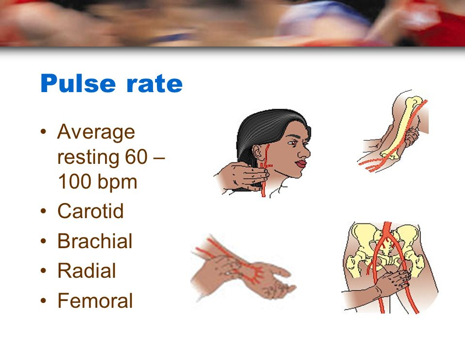 Pulse rate Average resting 60 – 100 bpm Carotid Brachial Radial