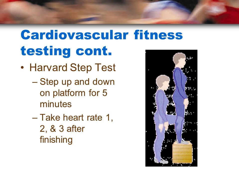 Cardiovascular fitness testing cont.