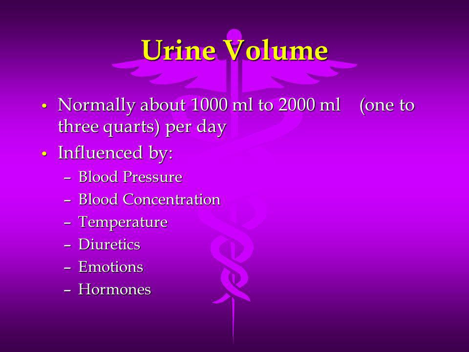 Urine Volume Normally about 1000 ml to 2000 ml (one to three quarts) per day. Influenced by: Blood Pressure.