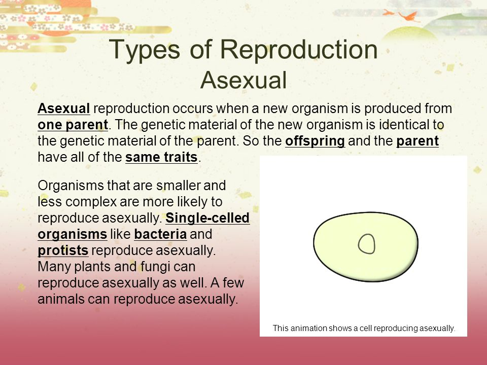 types of reproduction In all types of asexual reproduction, the offspring are exactly like the parent because the offspring have the same dna as the parent.