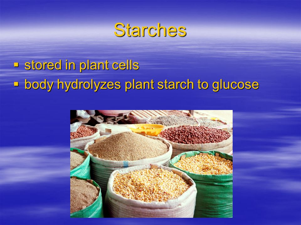 Starches stored in plant cells body hydrolyzes plant starch to glucose