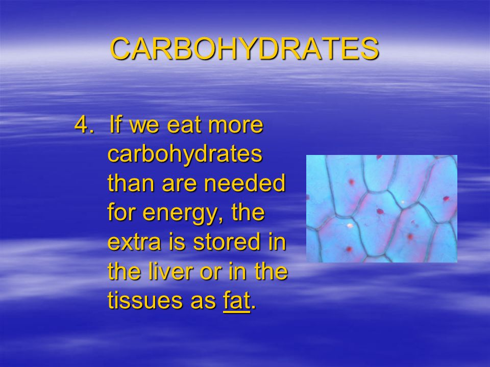 CARBOHYDRATES 4.
