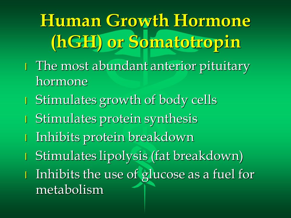 Human Growth Hormone (hGH) or Somatotropin