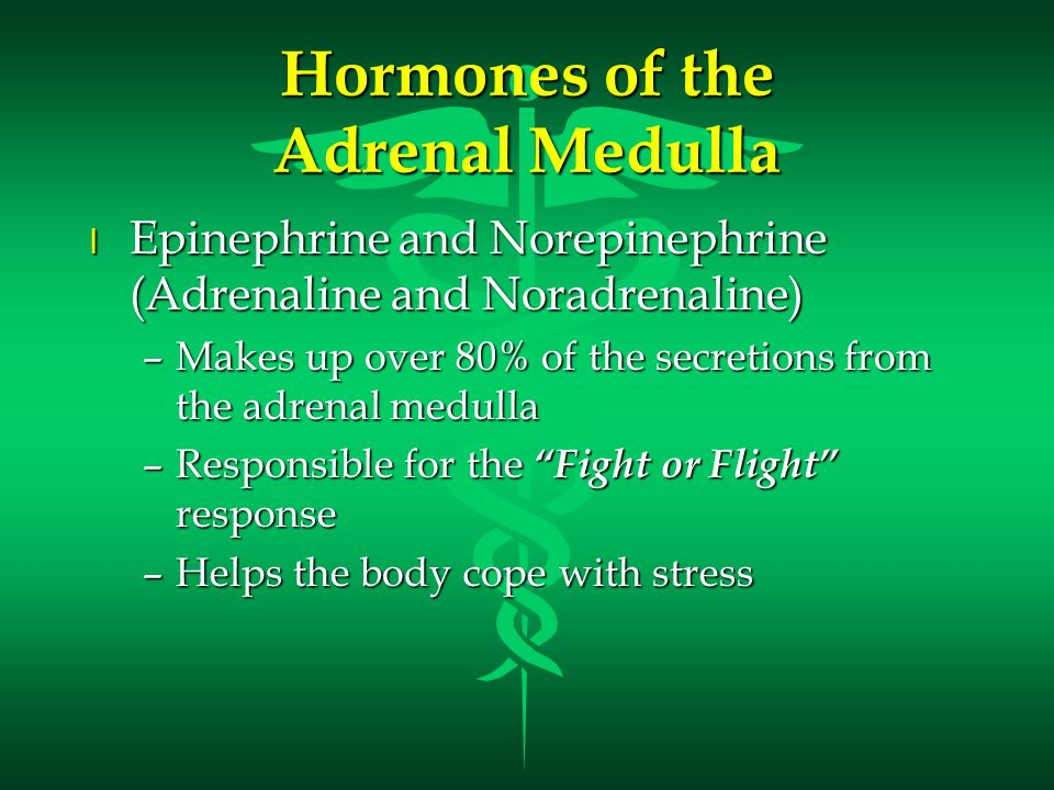 Hormones of the Adrenal Medulla