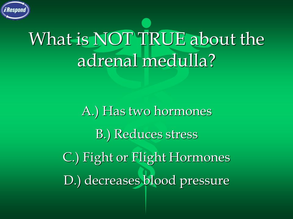 What is NOT TRUE about the adrenal medulla