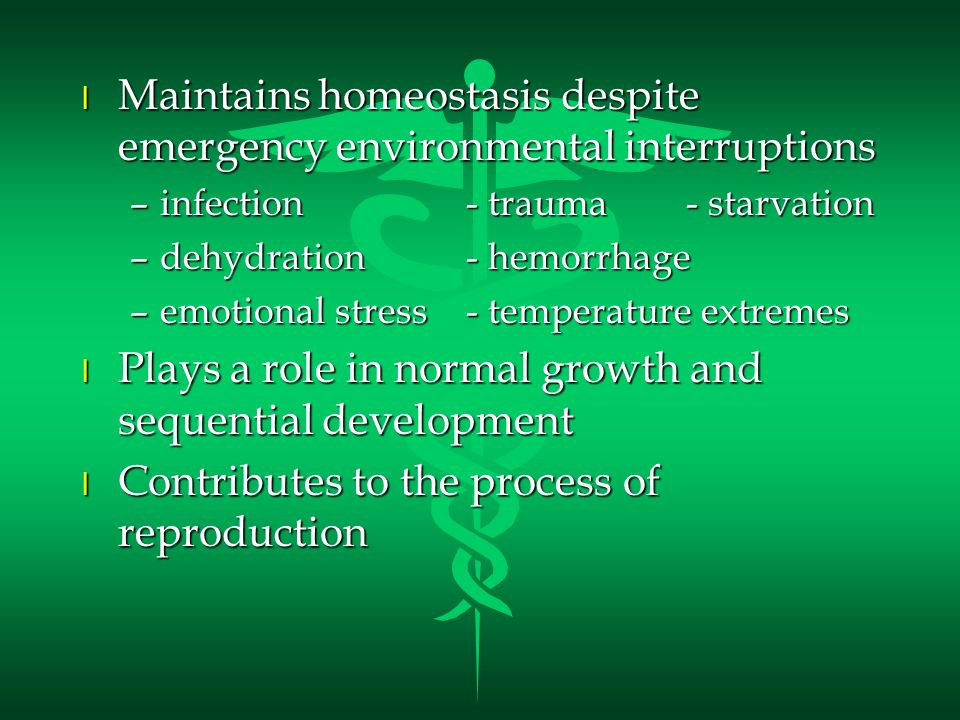 Maintains homeostasis despite emergency environmental interruptions