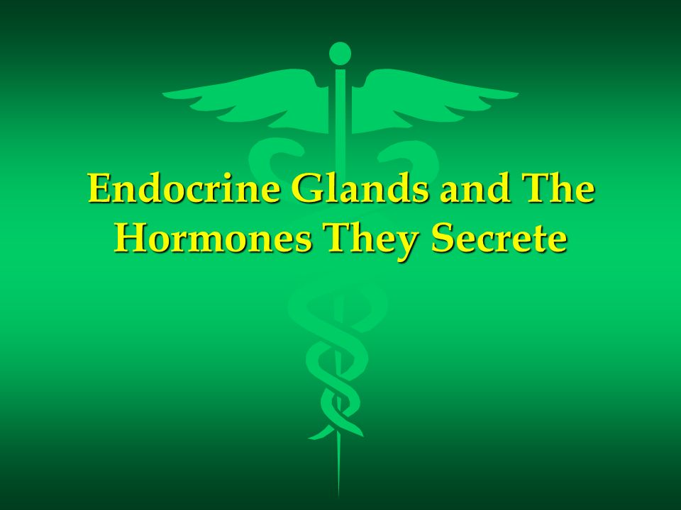 Endocrine Glands and The Hormones They Secrete