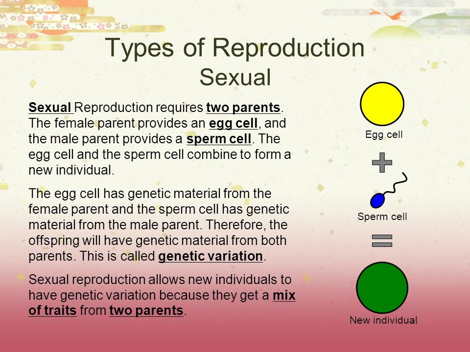 Types of Reproduction Sexual