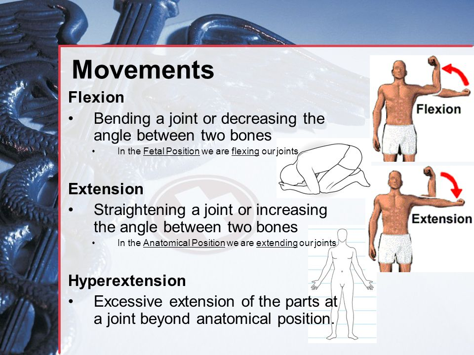 Movements Flexion. Bending a joint or decreasing the angle between two bones. In the Fetal Position we are flexing our joints.