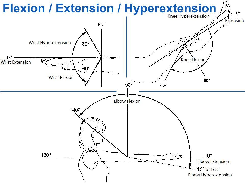 Flexion / Extension / Hyperextension