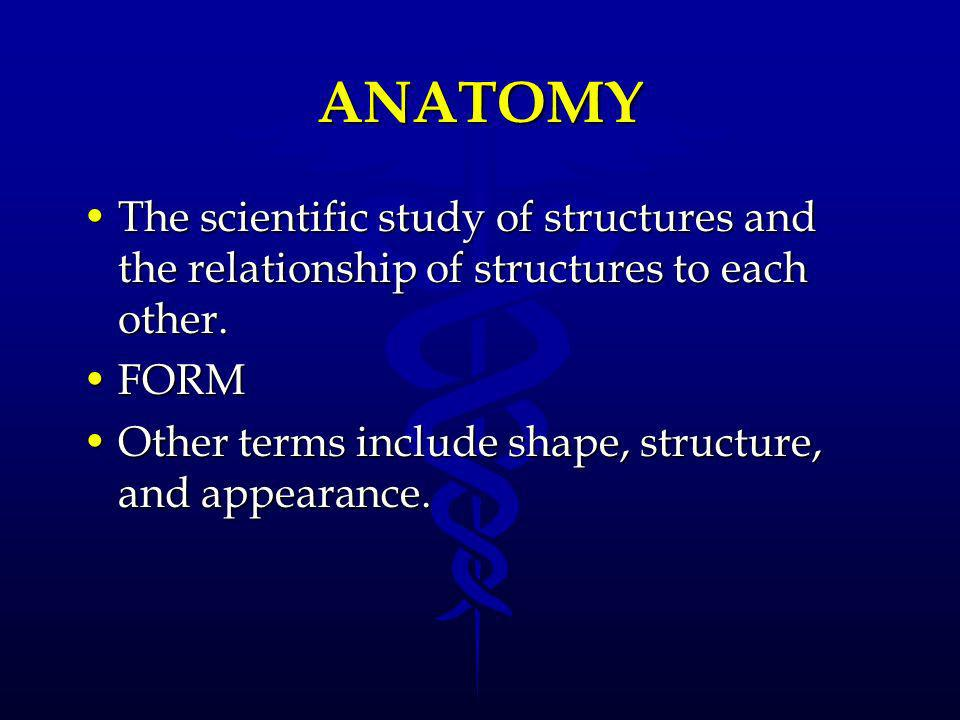 ANATOMY The scientific study of structures and the relationship of structures to each other. FORM.