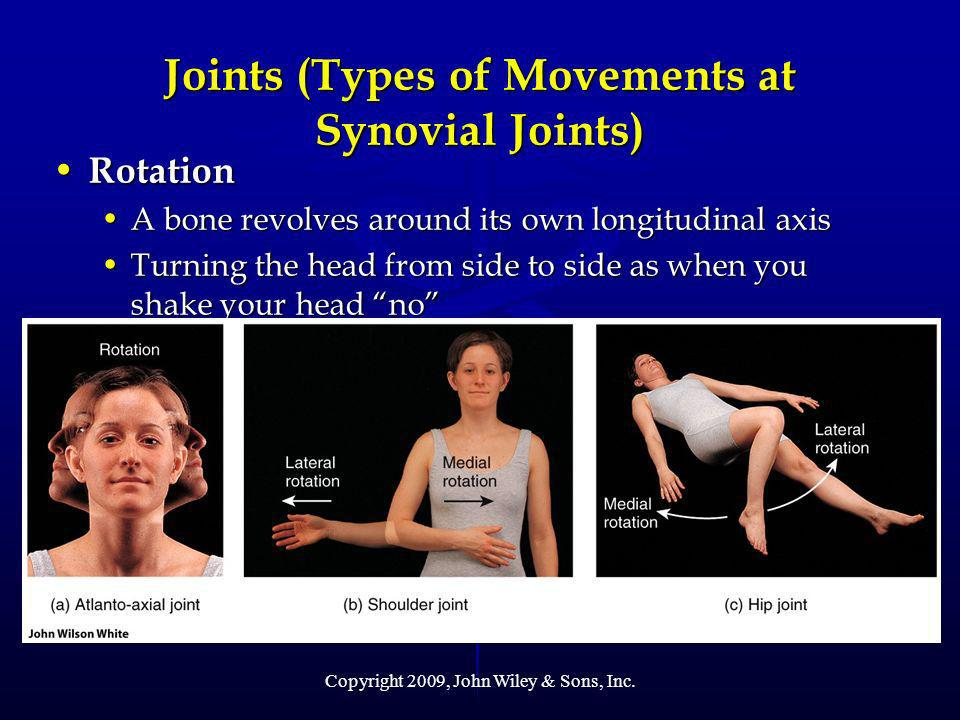 Joints (Types of Movements at Synovial Joints)