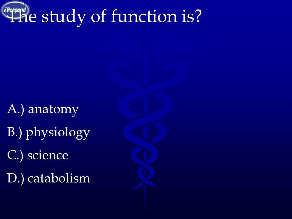The study of function is