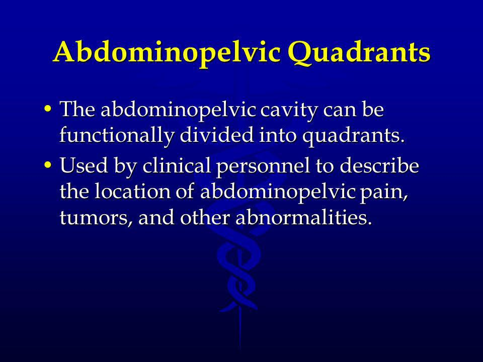 Abdominopelvic Quadrants