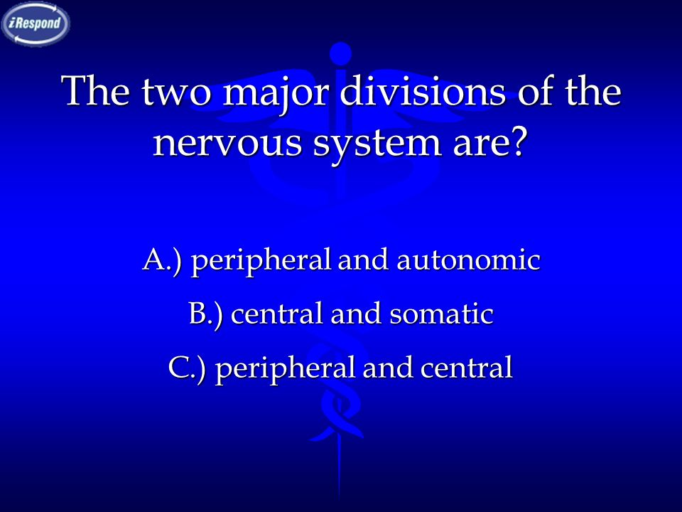 The two major divisions of the nervous system are